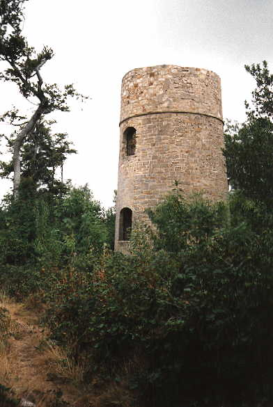 Fuller's Tower Brightling